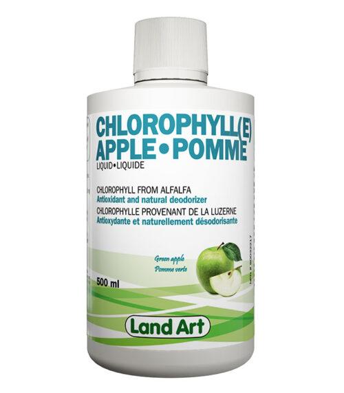 chlorophylle pomme luzerne