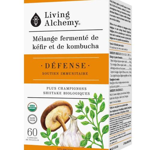 defense soutien immunitaire kefir kombucha