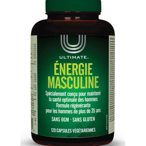 energie masculine male energy brad king