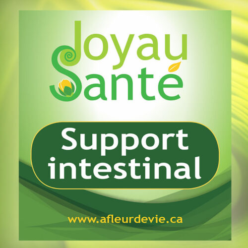 support intestinal joyau sante